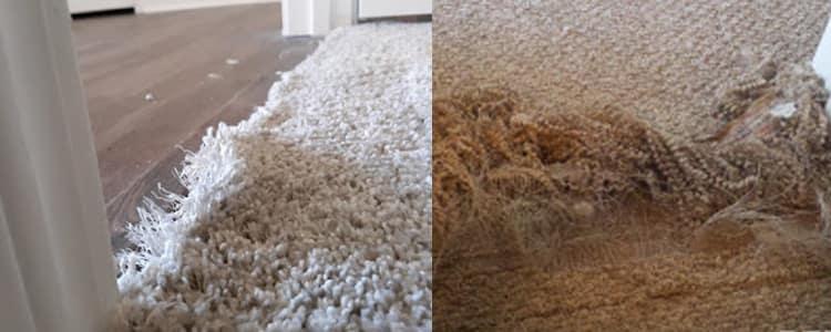 Best Carpet Repair Victoria Park